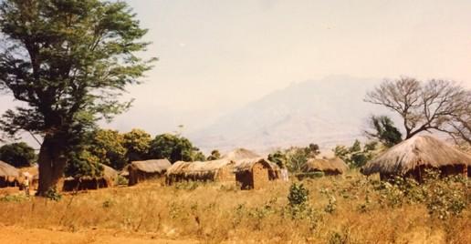 Bro. Bob Salee in Africa